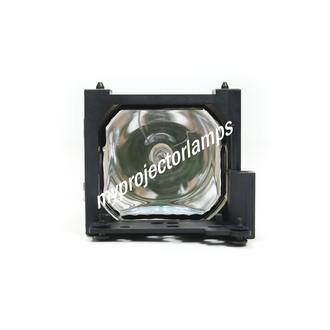 Liesegang dv355 Projector Lamp with Module