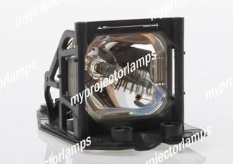 Infocus LP250 Projector Lamp with Module
