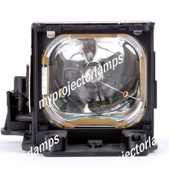 Infocus LP815 Projector Lamp with Module