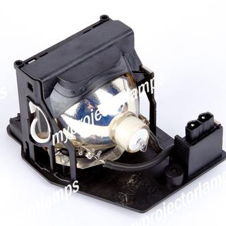 Infocus C420 Projector Lamp with Module