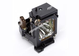 JVC V13H010L12 Projector Lamp with Module