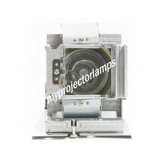 Acer P5206 Projector Lamp with Module