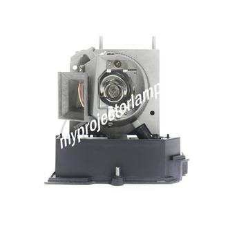 Acer EC.J9300.001 Projector Lamp with Module