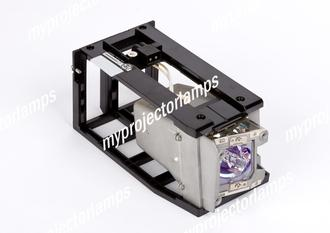 Acer P7203 Projector Lamp with Module