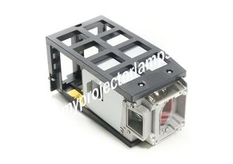Acer P7605 Projector Lamp with Module