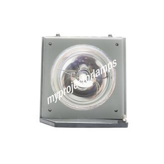 Acer PD521 Prosjektørlampe med modul