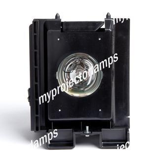 Samsung PT50DL14X/SMS Lampade e lampadine per proiettori