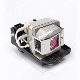 Infocus Work Big IN2102 Projector Lamp with Module