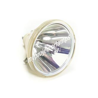 Barco (バルコ) PSI-2848-12 プロジェクター用電球バルブ