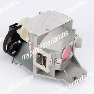 BenQ W1070 Projector Lamp with Module