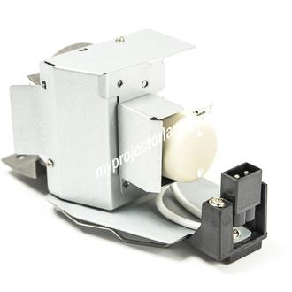BenQ 5J.J3V05.001 Projector Lamp with Module