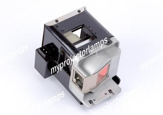BenQ 5J.J4J05.001 Projector Lamp with Module