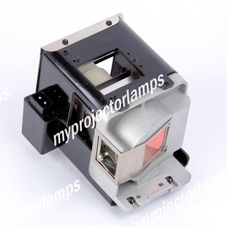 BenQ 5J.J4J05.001 Projector Lamp with Module