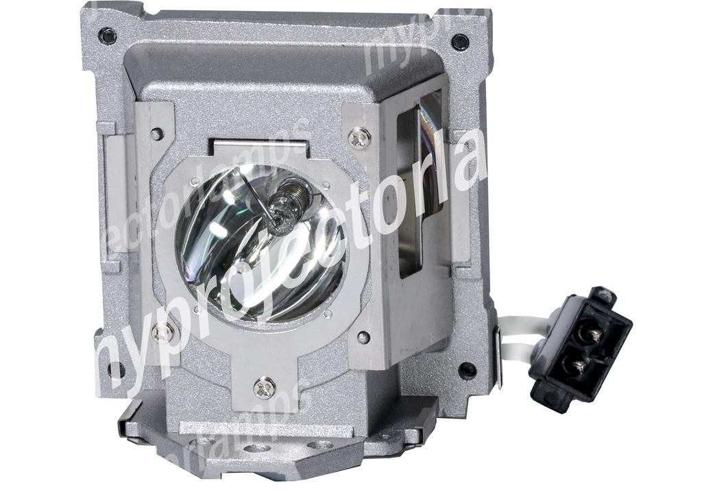BenQ 5J.J8C05.001 Projektorlampor med Modul