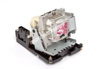BenQ 5J.J0W05.001 Projector Lamp with Module