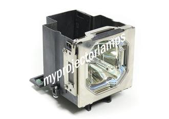 Panasonic PT-SLX12KC Projector Lamp with Module