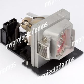 Dell 725-10127 Projector Lamp with Module