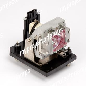 Digital Projection 110-284 Projector Lamp with Module