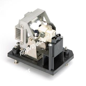 Digital Projection 109-804 Projector Lamp with Module