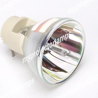 Ekik 13080021 Bare Projector Lamp