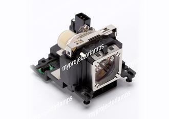 Sanyo PLC-WXU300K Projector Lamp with Module