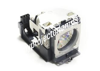 Sanyo PLC-WXU3ST Projector Lamp with Module