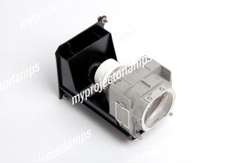 Eiki 23040021 Projektorlampen mit Modul