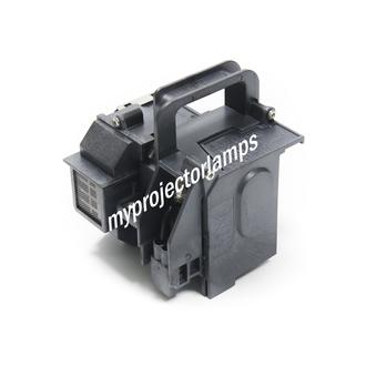 Epson V11H291120 Projector Lamp with Module