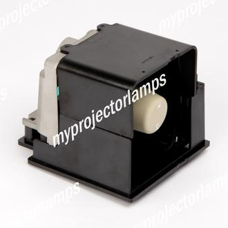 Infocus IN2116 Projector Lamp with Module