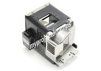 Infocus EN732 Projector Lamp with Module