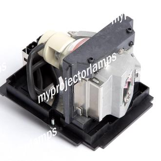 Infocus IN5504 Projector Lamp with Module