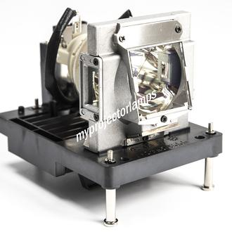 Infocus IN5855L Projector Lamp with Module