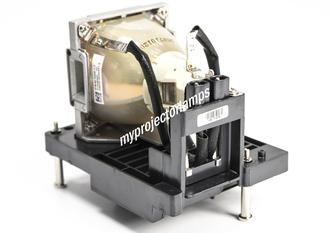 Infocus IN5555L Projector Lamp with Module