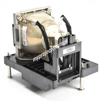 Infocus SP-LAMP-082 Projector Lamp with Module