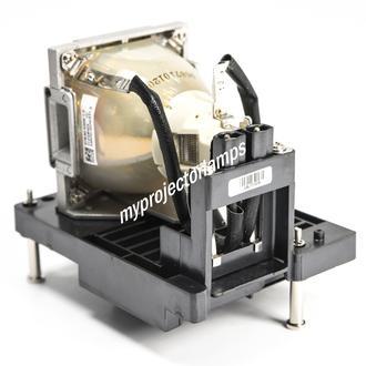 Infocus SP-LAMP-082 Projektorlampen mit Modul