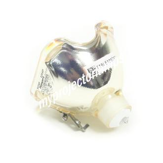 LG AJ-LAF1 プロジェクター用電球バルブ
