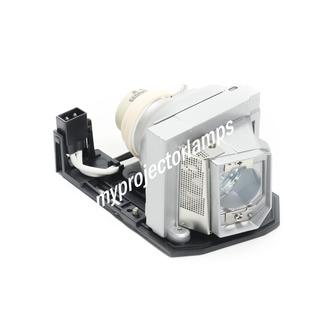 Bulb Only Original Philips Projector Lamp Replacement for Optoma GT1080