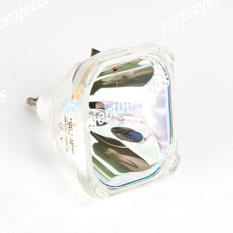 with Philips Bulb Inside Replacement Lamp with Housing for PHILIPS CBRIGHT SV2