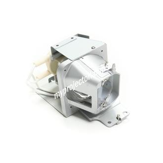 Optoma SP.70201GC01 Projector Lamp with Module