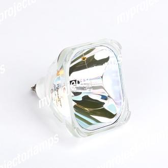 Replacement Lamp with Housing for PHILIPS LC4043G with Philips Bulb Inside