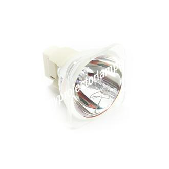 Planar PD7170 Bare Projector Lamp
