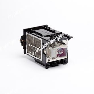 Planar PD8150 Projector Lamp with Module