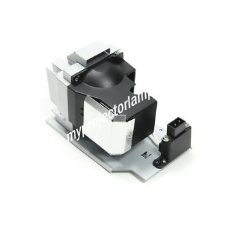 Projection Design F10 Projector Lamp with Module