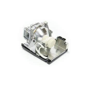 Promethean PRM25 Projectorlamp met Module