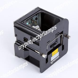Runco VX-33d Projector Lamp with Module