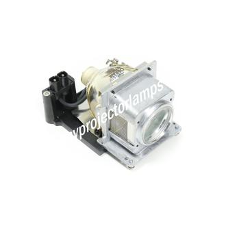 Sanyo POA-LMP113 Projector Lamp with Module