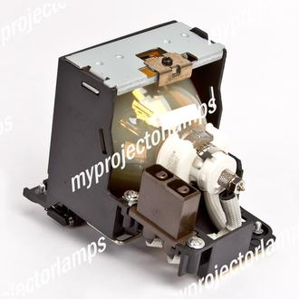 Sony VW11HT Projector Lamp with Module
