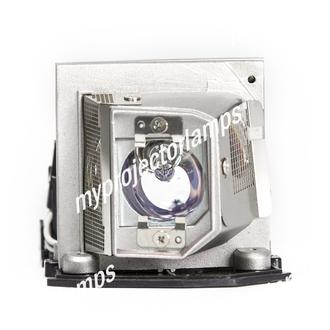 Toshiba NPS10A Projector Lamp with Module
