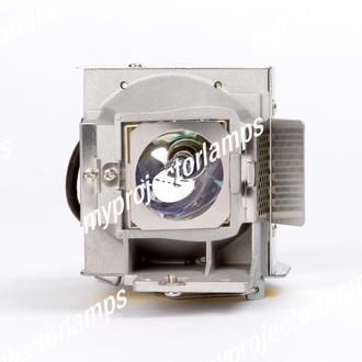 Viewsonic PJD6223-1W Projector Lamp with Module