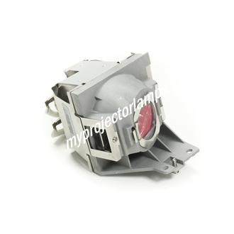 Viewsonic PJD5155 Projector Lamp with Module